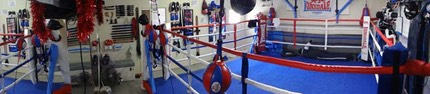 private Boxing ring mma gym gold coast